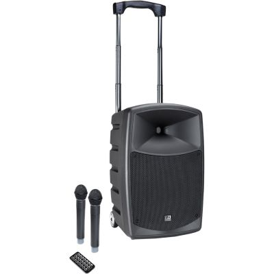 LD Systems ROAD BUDDY 10 HHD 2 B5